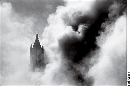 Photograph by Seth Cohen. Visit the protographer's Web site at www.sethphoto.com.
